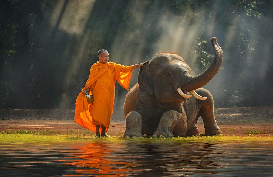 Buddismo in Thailandia: i principi